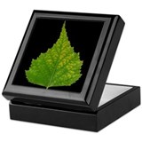 Fall Birch Leaf Keepsake Box