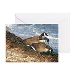Cape Cod Beachcombers (1) Greeting Card