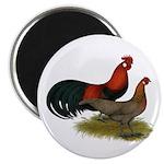 Phoenix BB Red Chickens Magnet