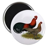 """Phoenix BB Red Chickens 2.25"""" Magnet (10 pack"""