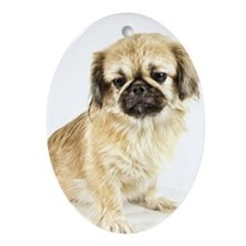 Pekingese Dog Christmas Ornament (Oval)