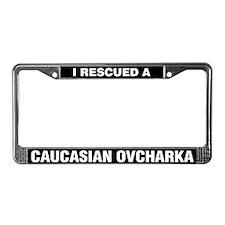 I Rescued a Caucasian Ovcharka