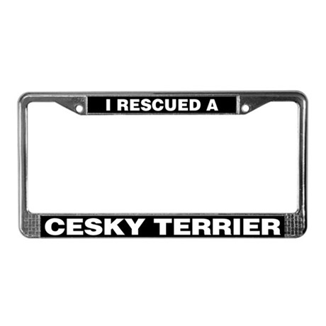 I Rescued a Cesky Terrier