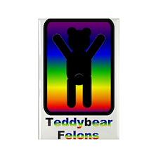 Teddybear Felons Rectangle Magnet