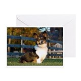 Pembroke Welsh Corgi Greeting Cards