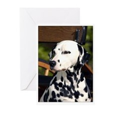 Dalmatian on Cart Greeting Cards