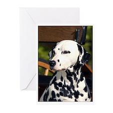 Dalmatian on Cart Greeting Cards