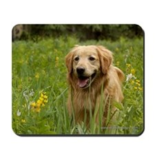 Golden Retriever and Wildflowers Mousepad