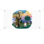 St. Fran. (FF) - Ragdoll (LynxPt) Banner