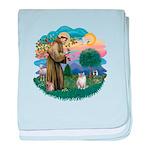 St. Fran. (FF) - Ragdoll (LynxPt) Infant Blanket