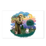 St. Fran. (FF) - Ragdoll (LynxPt) Postcards (Packa