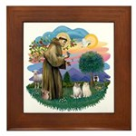 St Fran(f) - 2 Ragdolls Framed Tile