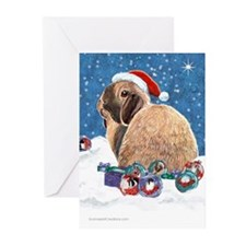 Santa Rabbit Christmas Greeting Cards (Pk of 20)