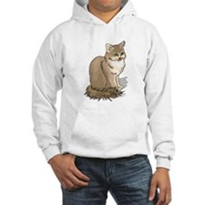 Ragdoll Cat Portrait Hooded Sweatshirt