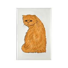 Red Persian Cat Portrait Rectangle Magnet