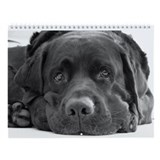 "Labrador Retriever Wall Calendar ""B"""
