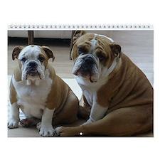 "Bulldog Wall Calendar ""F"""
