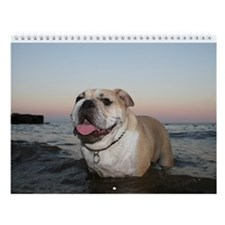 "Bulldog Wall Calendar ""K"""