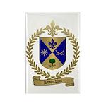 DESJARDINS Family Crest Rectangle Magnet (10 pack)