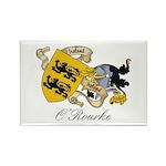 O'Rourke Family Sept Rectangle Magnet (10 pack)