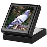 Pigeon Keepsake Box