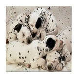 DALMATION PUPPY PILE Tile Coaster