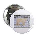 Polar Bear Photo Button