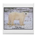 Polar Bear Photo Tile Coaster
