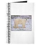 Polar Bear Photo Journal