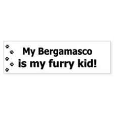 Bergamasco Furry Kid Bumper Bumper Sticker