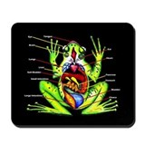 Frog Anatomy Mousepad