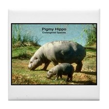 Pygmy Hippo Hippopotamus Photo Tile Coaster