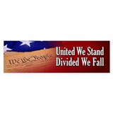 We The People Car Sticker