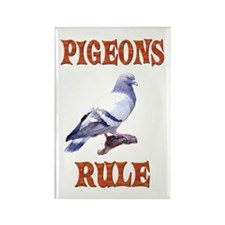 Pigeon Rectangle Magnet