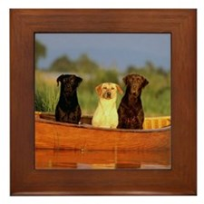 RAINBOW of LABS Framed Tile