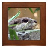 Resting Otter Framed Tile