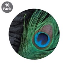 "Black Velvet Peacock 3.5"" Button (10 pack)"