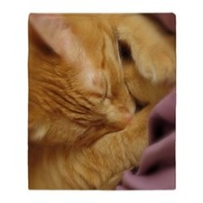 Sleepy Tiger Blanket