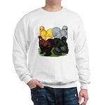 Silkie Assortment Sweatshirt