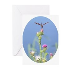 Dragonfly Note Cards (Pk of 20)