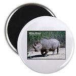 White Rhino Rhinoceros Photo Magnet