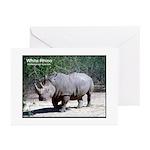 White Rhino Rhinoceros Photo Greeting Cards (Packa