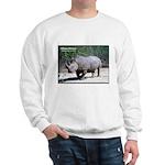 White Rhino Rhinoceros Photo Sweatshirt