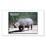 White Rhino Rhinoceros Photo Rectangle Sticker
