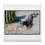 Gila Monster Lizard Photo Tile Coaster