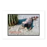 Gila Monster Lizard Photo Postcards (Package of 8)