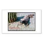 Gila Monster Lizard Photo Rectangle Sticker