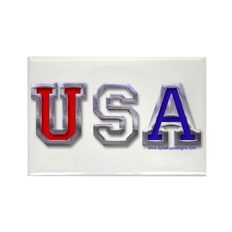 USA Chrome Rectangle Magnet