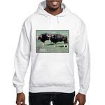 Gaur Bulls Photo Hooded Sweatshirt