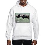 Gaur Bulls Photo (Front) Hooded Sweatshirt